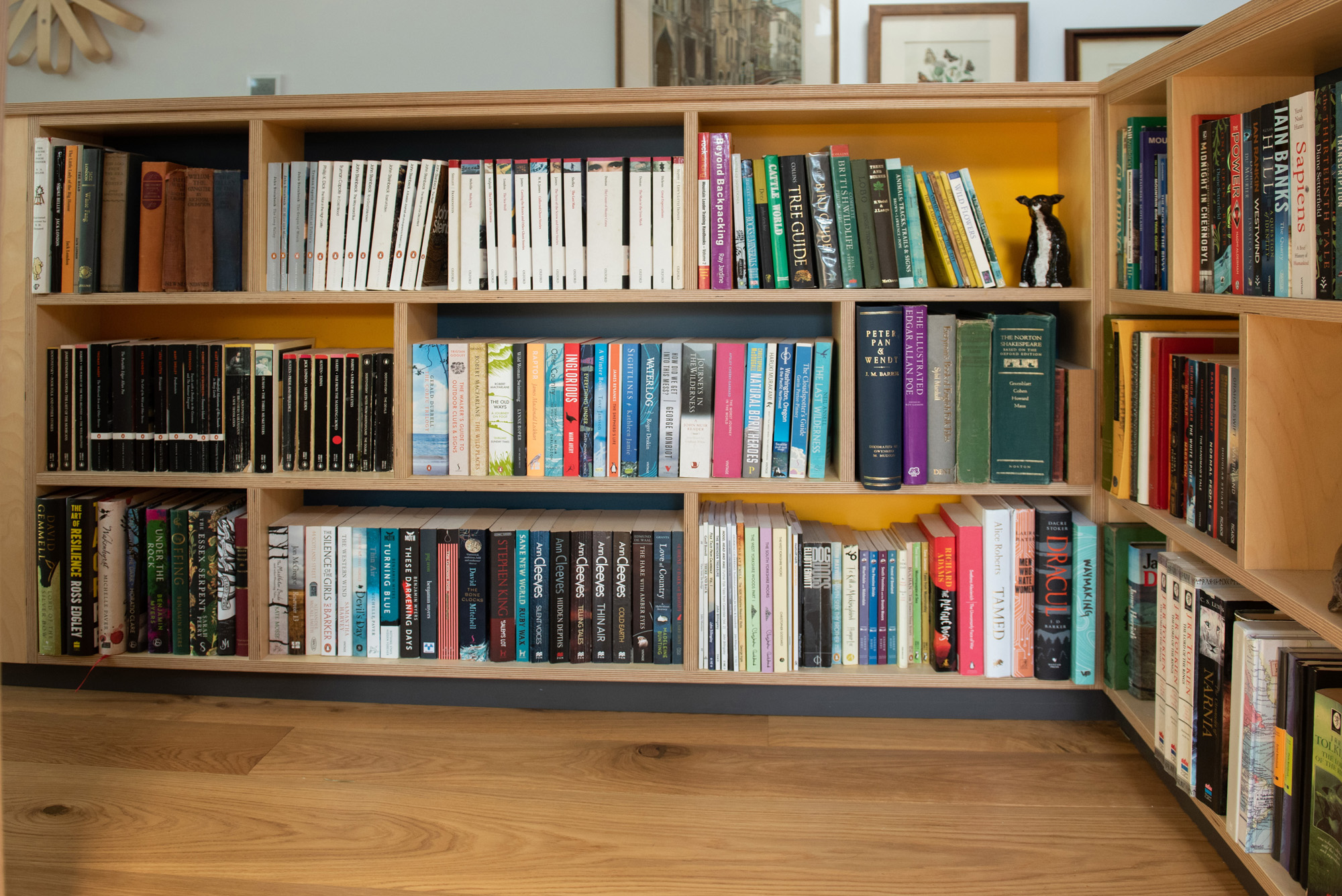 plywood bookcase laden with books